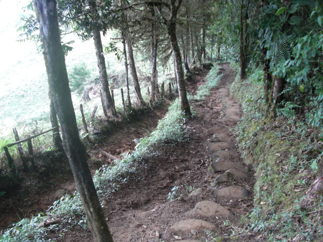 chirripo-dual-path
