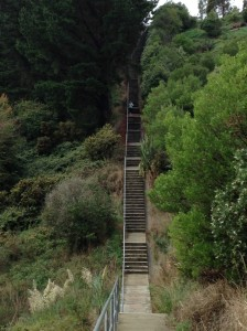 The upper part of the Tamaki steps